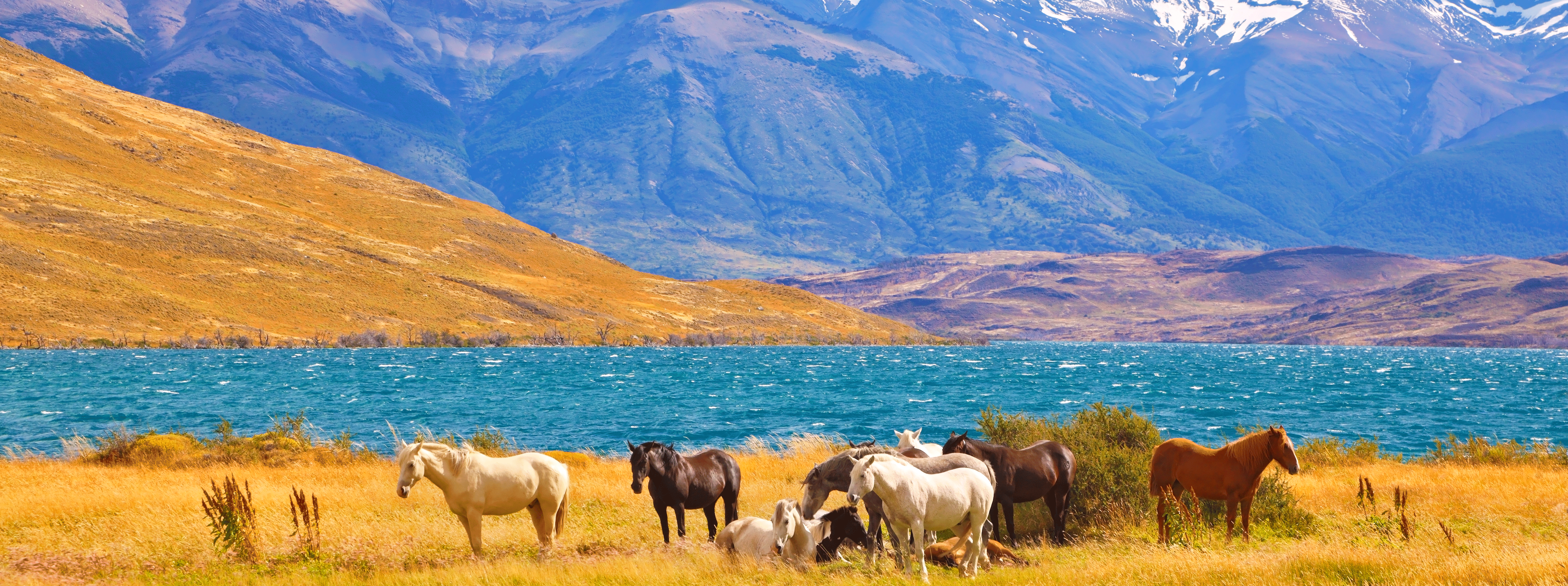 /resource/Images/southamerica/chile/headerimage/Torres-del-Paine.png